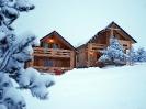 villa_natural_wood